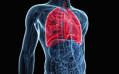 Изображение 2 - Изменения дыхательных органов - клиника Веримед