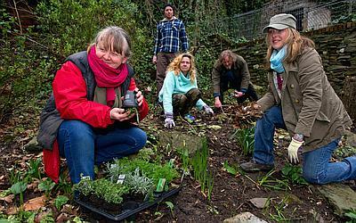 Изображение 4 - Группа занимается в саду - клиника Веримед