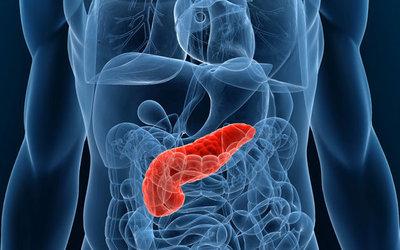Фермент поджелудочной железы инсулин - клиника Веримед