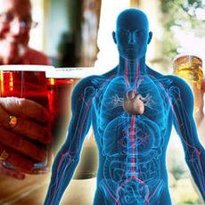 Влияние алкоголя на сердце - клиника Веримед