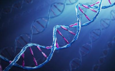 Генетические причины анорексии - Веримед