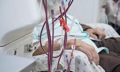 Лекарственная терапия начинается с очистки крови - Веримед