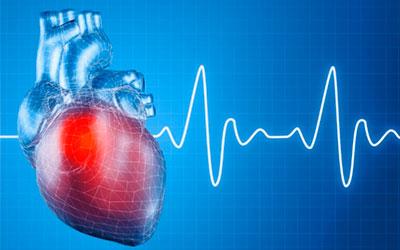 Низкой частотой сердечного ритма - Веримед