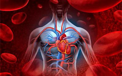Нарушения кровообращения - Веримед