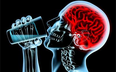 Алкоголь угнетает деятельность отделов головного мозга - Веримед