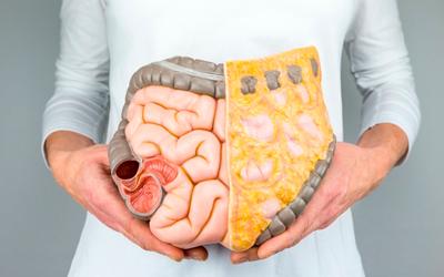 Хронические заболевания внутренних органов - Веримед