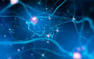 Лекарство вредит работе нервной системы - Веримед