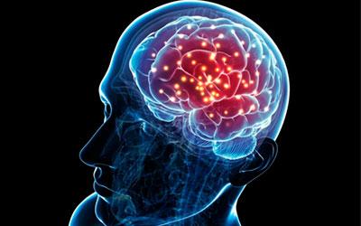 Мозговая активность снижается - Веримед