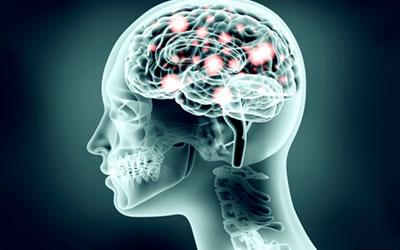 Недостаточное кровообращение и кислородное голодание мозга - Веримед