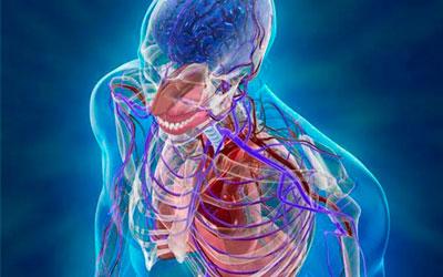 Расстройства в работе всех систем организма - Веримед