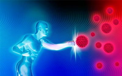 Иммунная система - Веримед