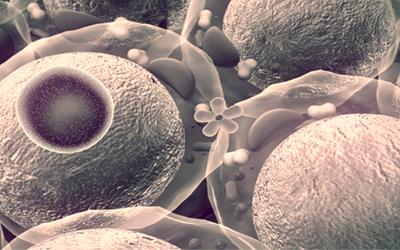 Этилгидрат — универсальный клеточный яд - Веримед