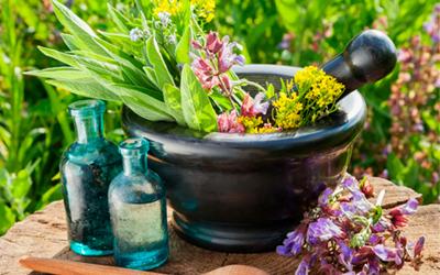Лекарственные травы с успокоительным эффектом - Веримед