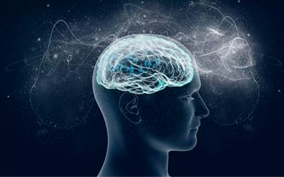 Влияние на психику и работу внутренних органов - Веримед