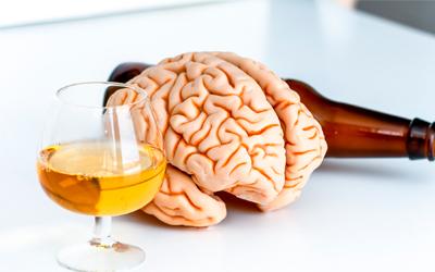 Воздействие этилового спирта на головной мозг – Веримед