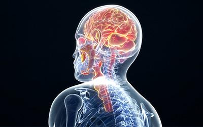 Оланзапин и алкоголь изменяют мозговую активность - Веримед